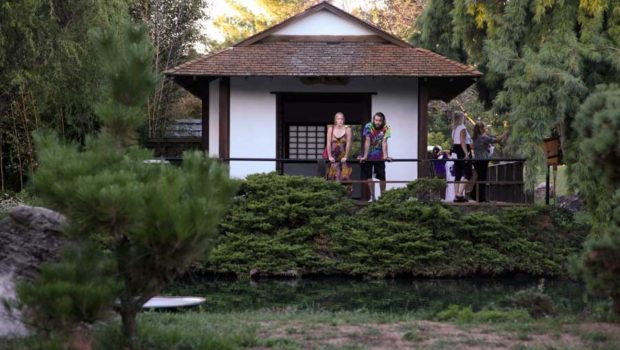 the Japanese tea house offers a quiet view of the garden