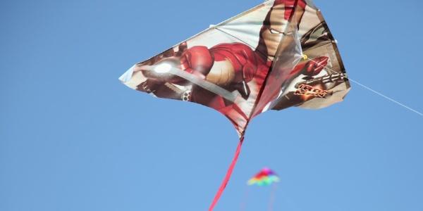Photos from 2010 Cherry Blossom Kite Festival