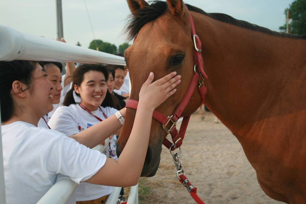 Isesaki-students-meet-horse
