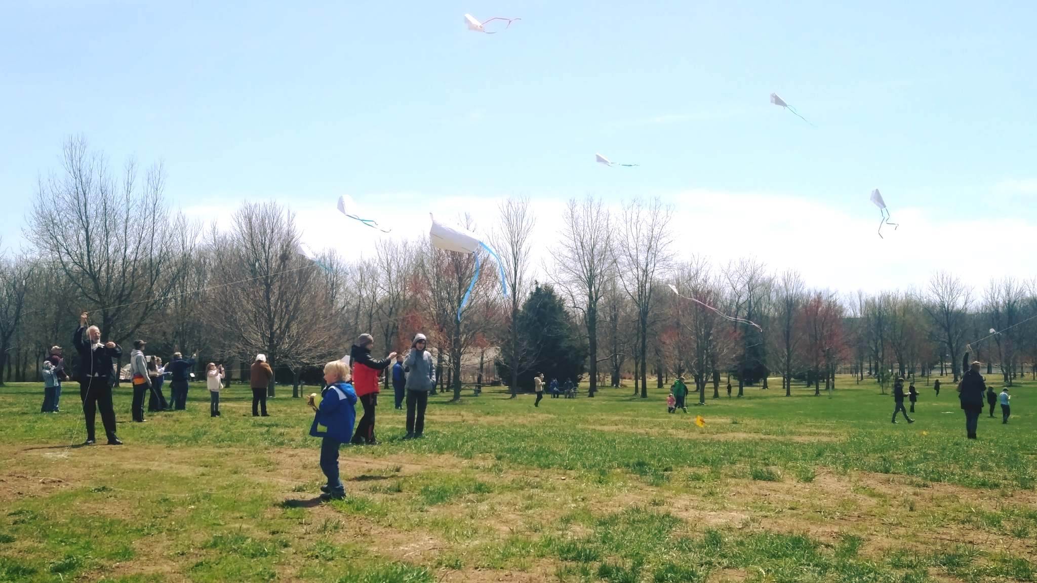 Kite Festival endures weather for successful celebration of spring and culture